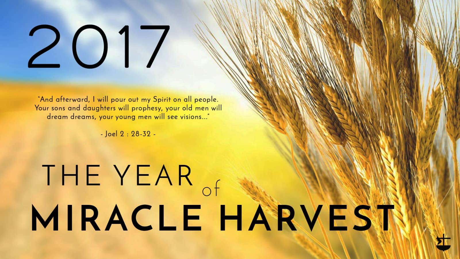 The year of Miracle Harvest